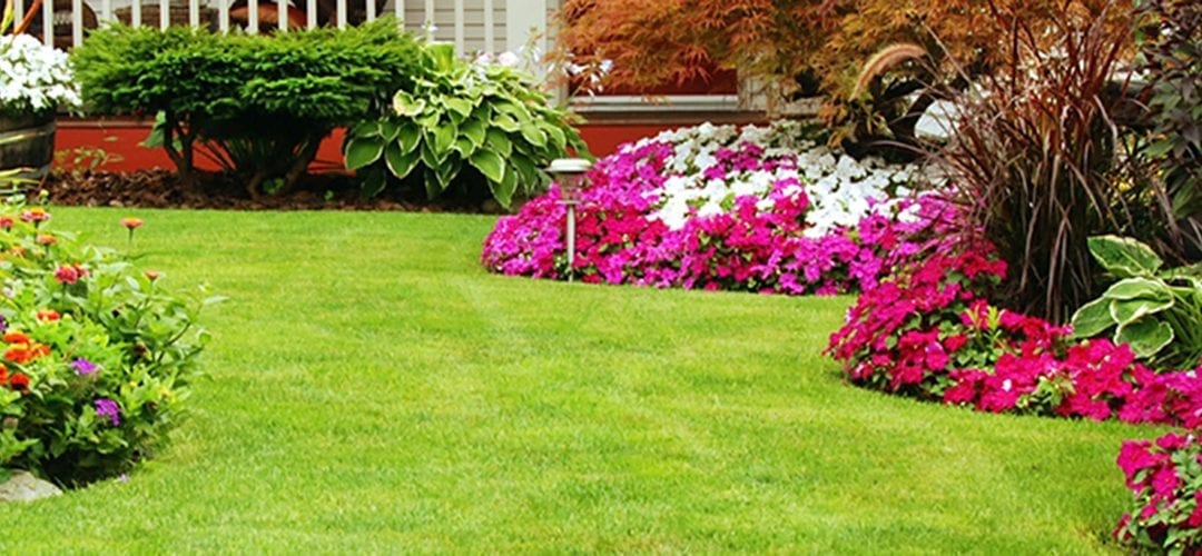 7 LAWN CARE TIPS FOR A PICTURE PERFECT YARD