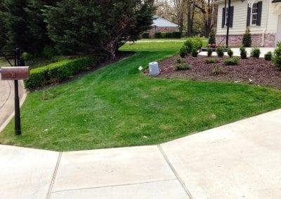 grass 17.IMG_2177