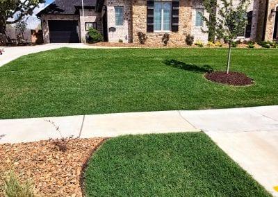 grass 9.IMG_1566