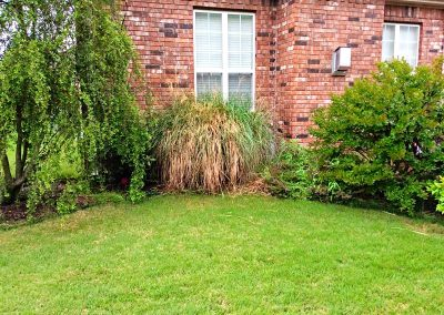 Red brick home with overgrown in the Fayetteville and Cave Spring area of AR