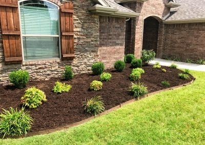 mulch and plantsIMG_2106