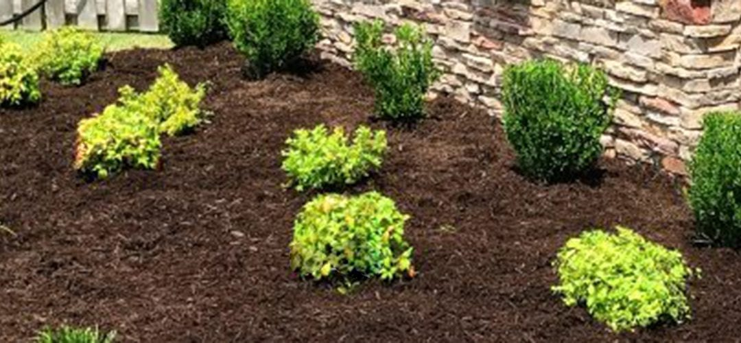 The Importance of Fresh Mulch