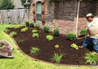 planting 4.IMG_2103