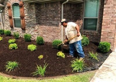 planting 5.IMG_2104