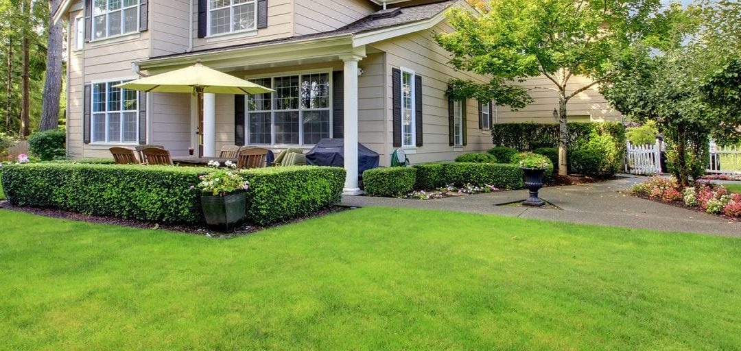 Landscaping Projects That Add Value and Happiness to Your Property