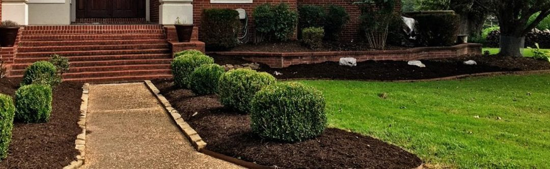 Pruning Bushes and Hedges in Arkansas