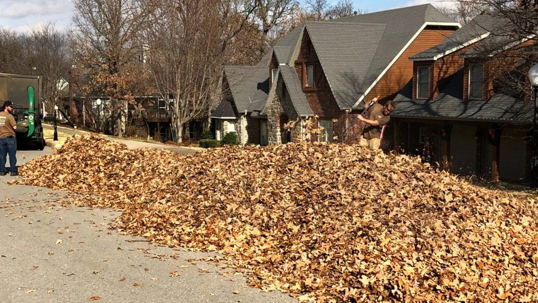 Do You Want an Easy Way to Get Rid of Your Leaves?