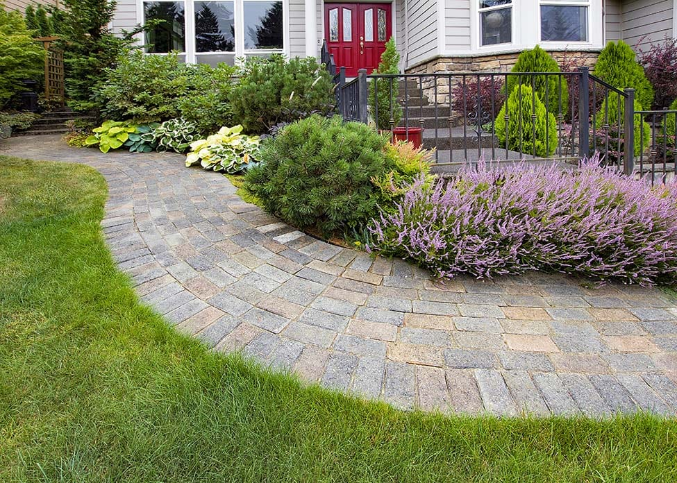 Front Yard Garden Curve Brick Paver Path / walkway with Green Grass Lawn Flowering Plants Trees and Shrubs. These are the sort of hardscapes A Clean Cut Lawn Care can design & install.