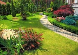 Backyard Landscaping with a path / walkway among shrubs and Flowers in Bloom. These are the sort of hardscapes A Clean Cut Lawn Care can design & install.