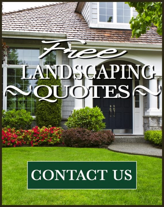 Lawn Care Fayetteville, AR